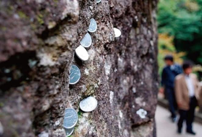 遊歩道の岩の亀裂に願い事コイン