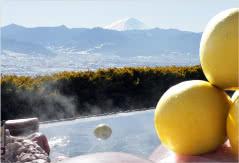 日本で唯一のフルーツ温泉